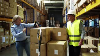 Senior woman manager and a man worker with barcode scanner working together in a warehouse.