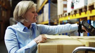 Senior woman manager with barcode scanner and an unrecognizable worker working together in a warehouse.