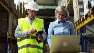 Senior woman manager with laptop and a man worker with barcode scanner working together in a warehouse.