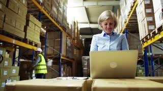 Senior woman manager with laptop and man worker working together in a warehouse.