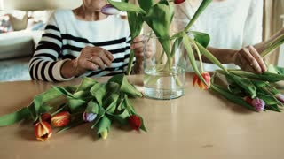 Unrecognizable elderly grandmother with an adult granddaughter at home. Women putting flowers in a vase.
