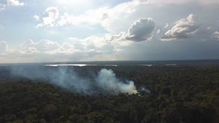 Fire–fallow cultivation smoke plume in amazonian forest. Aerial view