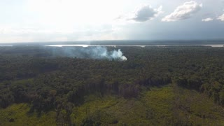 Slash-and-burn agriculture in Guiana. Global warming climate change. Drone view