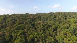 Sunny day blue sky aerial shot over amazonian rain forest Guiana. Horizontal