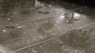Rain drops falling on a flat roof in the summer