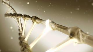 Golden DNA spiral rotating