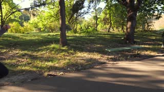 Young couple is running through the park on a sunny summer day, view from the back, slow motion, wide tracking shot