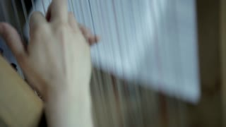 Classical Orchestra: Harp player