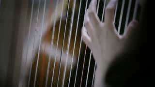 Classical Orchestra: Harpist