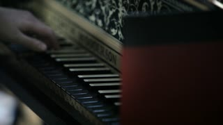 Classical Orchestra: Harpsichord player