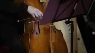 Classical Orchestra: Solo Cellist