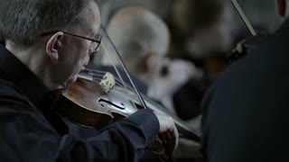 Classical Orchestra: Violin players