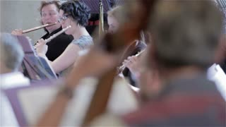 Orchestra rehearsal: pull focus from flutes to double bass