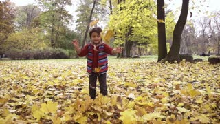 Boy playing with leaves in the park, steadycam shot, slow motion shot at 240fps