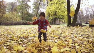 Boy playing with leaves in the park, steadycam shot, slow motion shot
