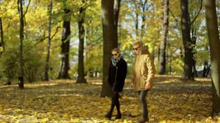 Couple chatting and walking in the autumnal park