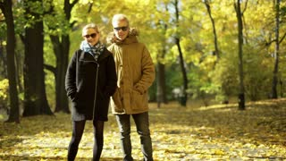 Couple standing on the pathway in the autumnal park and smiling to the camera