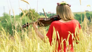 Girl with wreath of flowers standing back and playing violin on the field, stead