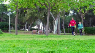 Joggers running in the park and smiling to the camera, steadycam shot