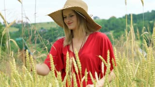 Morose girl standing in the grain field and looking for a signal