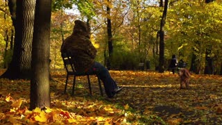 Person sitting on the bench and dog moving in the park, steadycam shot, slow mot