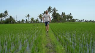 Man walking on the path in the field and looks relaxed, steadycam shot, slow mot