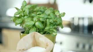 View of fresh basil and female hands kneading the dough on the wooden table, dol