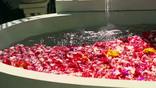 Water puring into bath full of colorful flowers, slow motion shot at 240fps