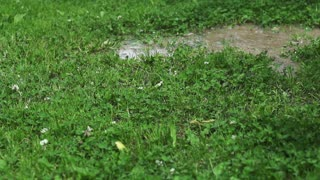 Woman in rain boots jumping into puddle, slow motion shot at 240fps