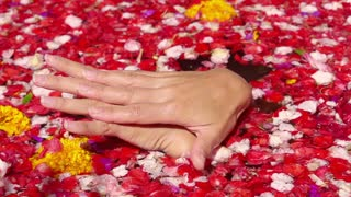 Woman massage and washing hands in the bath full of flowers, slow motion shot