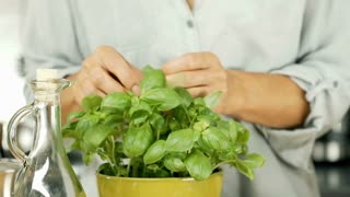 Woman picking basil and cutting it on the wooden board, dolly shot