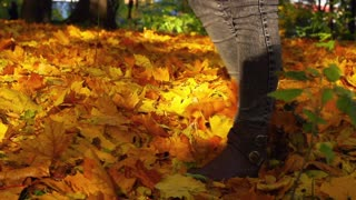 Woman walking on the ground full of leaves in the park, slow motion shot at 240f