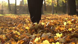 Woman walking on the leaves in the park, steadycam shot, slow motion shot at 240
