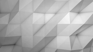 Abstract geometric background with white low poly 3D surface waving