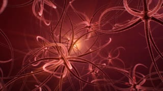 Digital animation of signals flowing among nervous in human brain