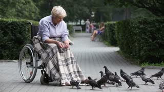 Elderly lady in a wheelchair throwing bread crumbs to pigeons
