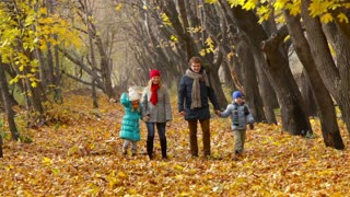 Family of four strolling along the lane scattered with golden leaves