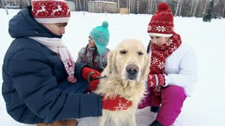 Kids stroking a lovely golden retriever outdoors in winter