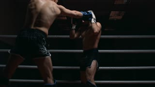 Image result for picture of mma fighter in ring