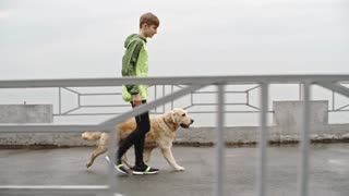Side view of teenage boy in sport suit walking with his retriever at rainy day in slow motion