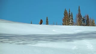 Snowboarder riding down the hill, spinning and filming himself with action camera