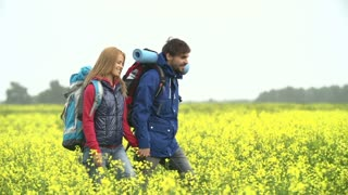 Tracking shot of couple of tourists with backpacks walking through yellow meadow and discussing their further route