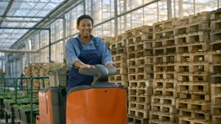 Dolly of female African worker in overalls smiling while driving forklift truck and transporting plants in commercial greenhouse