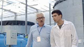 Dolly shot of young man in lab coat discussing work with senior male manager in glasses while walking in greenhouse complex