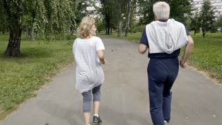 Follow shot of two senior people jogging together on road in park, rear view