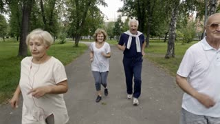 Front view of six elderly people having fun when jogging in park on warm day, smiling and looking at camera