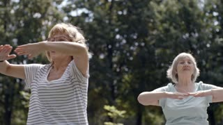 Group of four elderly people doing exercises in park and performing torso rotations on warm summer day