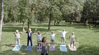 Group of six elderly people and their trainer doing elbow rotation exercise when standing on yoga mats in park