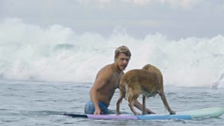 Man helping his golden retriever to catch a wave in ocean and dog riding on surfboard towards coastline