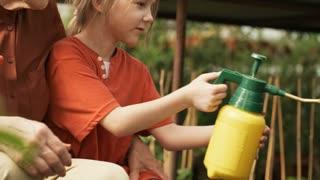 Medium shot of senior woman in straw hat hugging cute little girl helping her spray fertilizer on plants in garden